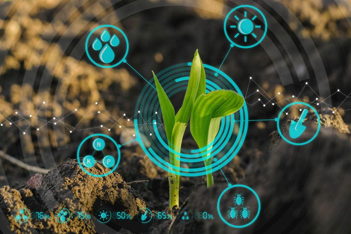 Empowering African Farmers with Data